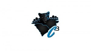 Huddleball.com- C3 Carolina Panthers Podcast On Stitcher Cover Photo- 10-20-15